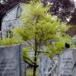 davis-graveyard-2011-day-1-3070