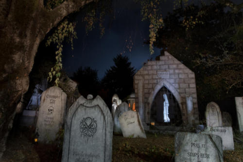 2015-Davis-Graveyard-Night-8689-1