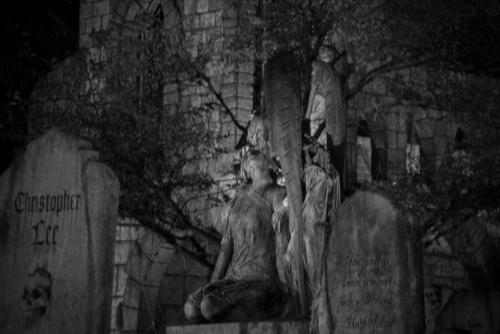 2015-Davis-Graveyard-Night-8693-3