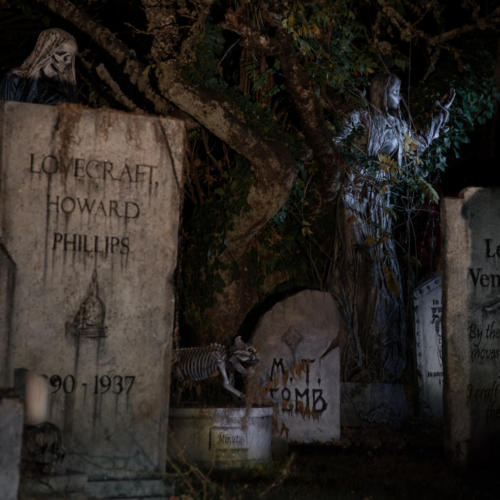2015-Davis-Graveyard-Night-8698-2